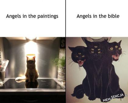 Biblijne aniołki. Memy