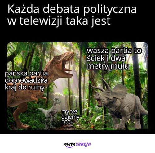 Wasza partia doprowadza kraj do ruiny. Memy polityczne. Debata