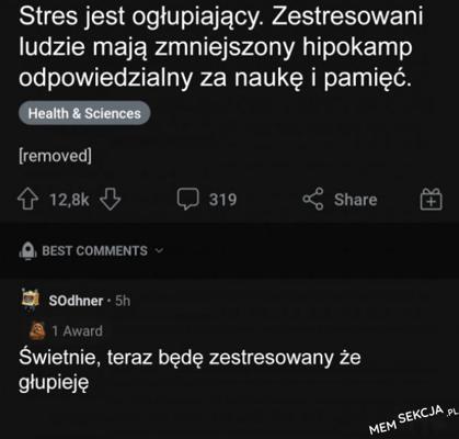 Stres jest ogłupiający. Memy. Stres