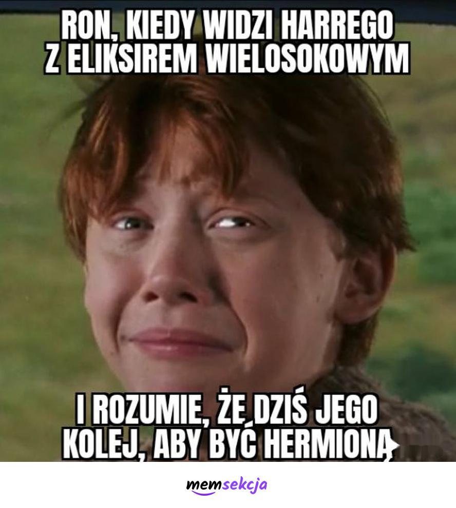 Dziś kolej Rona, żeby być Hermioną. Harry Potter. Ron  Weasley. Rudy  Z  Harrego  Pottera
