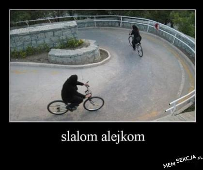 Slalom alejkom