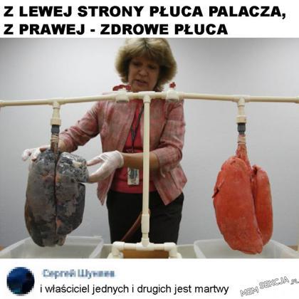Martwe płuca
