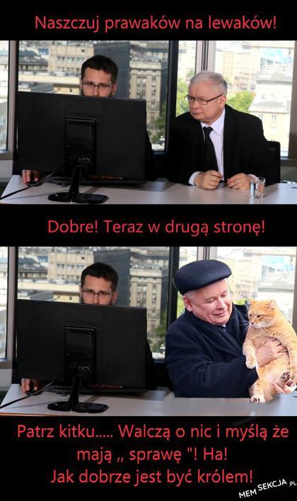 Naszczujmy ich na siebie. Memy polityczne. Jarosław  Kaczyński. Radosław  Fogiel