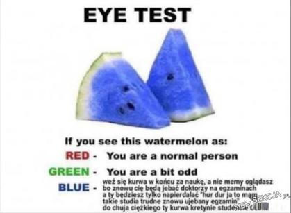Jeśli widzisz niebieskiego arbuza to się qrwa weź za naukę. Memy
