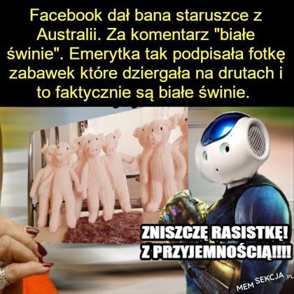 Białe świnie i AI na Facebooku