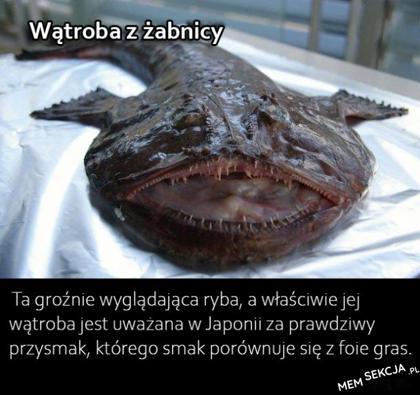 Żabnica. Memy