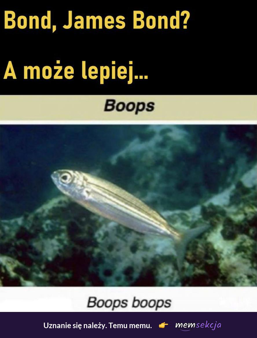 Boops, Boops boops. Memy. James  Bond. Ryba