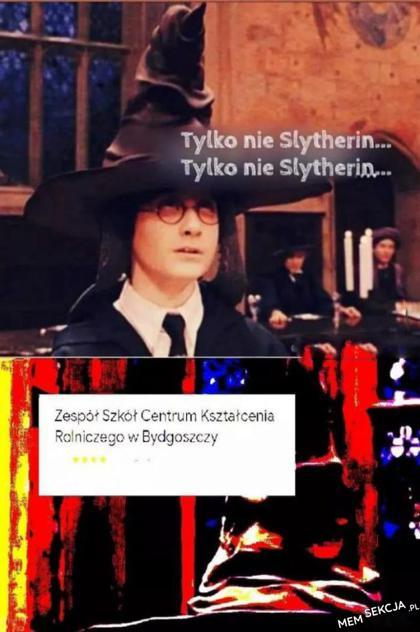 Tylko nie Slytherin