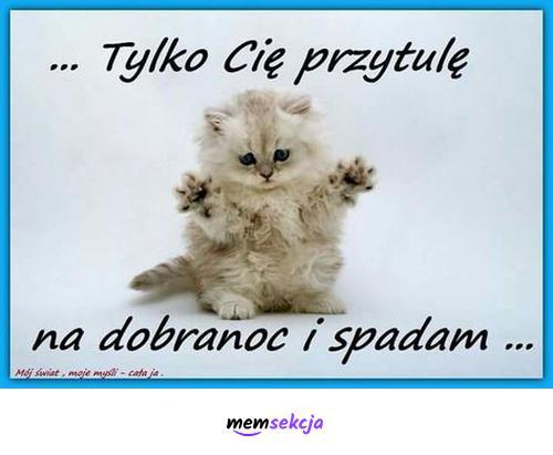 Tylko cię przytulę na dobranoc i spadam. Memy. Wesołe  Memy  Na  Dobranoc. Kotek. Przytulanie. Miłego  Wieczoru. Śmieszne  Kartki  Na  Dobranoc