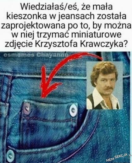 Mała kieszonka w jeansach jest na zdjęcie Krzysztofa Krawczyka