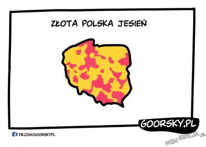 Złota Polska jesień w 2020