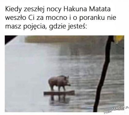 Hakuna Matata za mocno