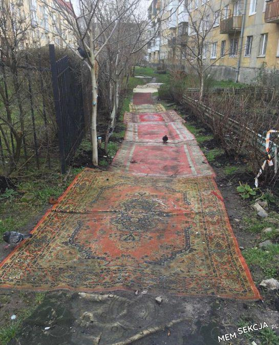 Dywanowe chodniki