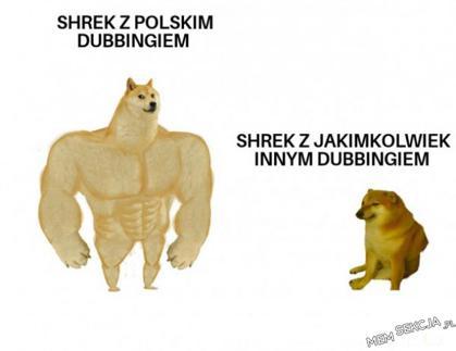Shrek z polskim dubbingiem jest najlepszy