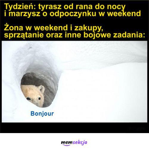 Kiedy w tygodniu tyrasz od rana do nocy a weekend też nie odpoczniesz. Memy. Bonjur