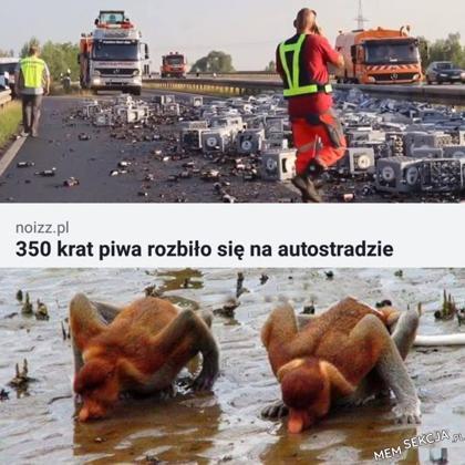 350 krat piwa rozbiło sięna autostradzie