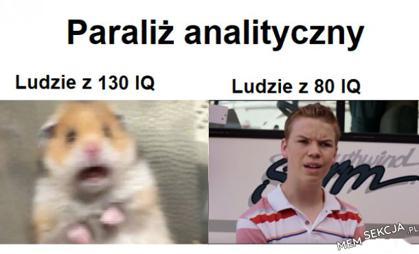 Paraliż analityczny