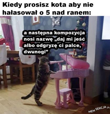 Kiedy prosisz kota aby nie hałasował. Memy