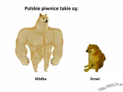 Polskie piwnice takie są