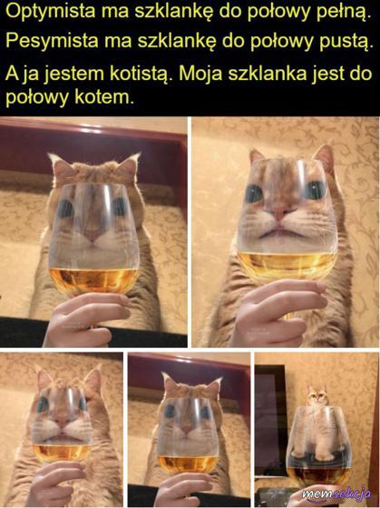 Kotista - szklanka do połowy kotem