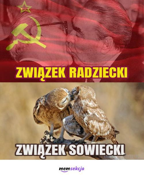 Związek Radziecki vs Związek Sowiecki. Śmieszne. Zsrr. Sowy