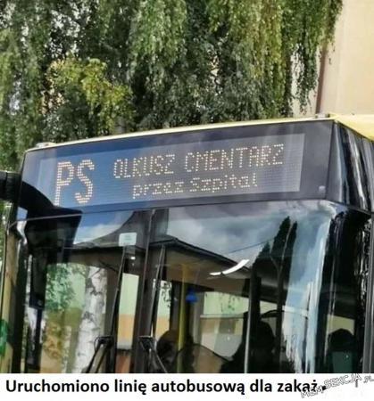 linia autobusowa dla zakażonych