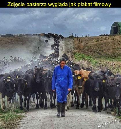 Zdjęcie pasterza wygląda jak plakat filmowy
