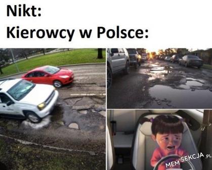 Kierowcy w Polsce