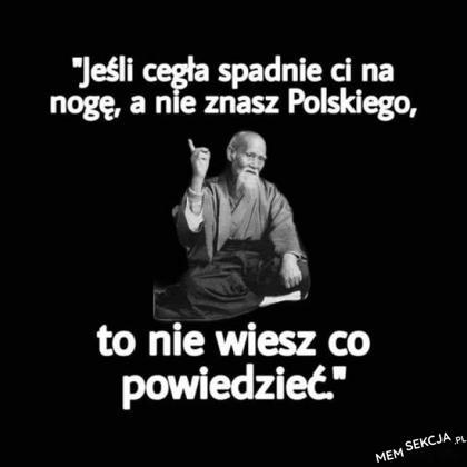 Jest to prawda, tylko w polskim są odpowiednie słowa, które mają moc obniżania poziomu bólu