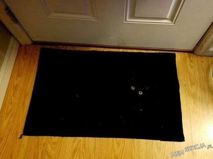 kot w czarnej dziurze