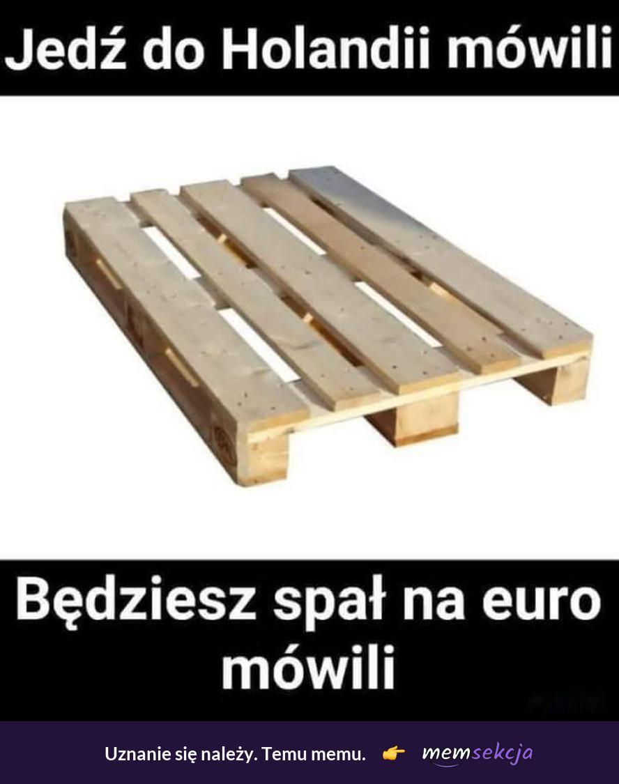 Spanie na euro w Holandii. Memy. Holandia. Praca. Euro