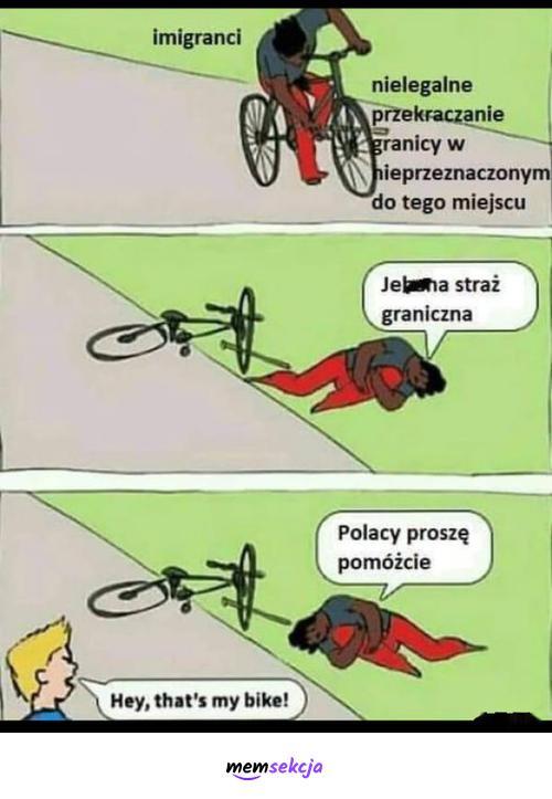 Nielegalne przekraczanie granicy. Memy. Imigranci. Straż  Graniczna