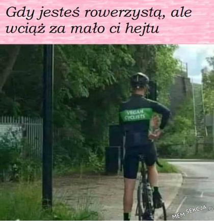 wegański rower
