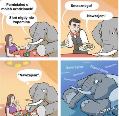 Słoń nigdy nie zapomina