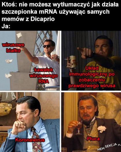 Wytłumaczenie działania szczepionki mRNA memami z DiCaprio