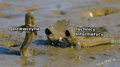 chłopaki z technikum tacy są