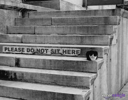 Proszę nie siadać