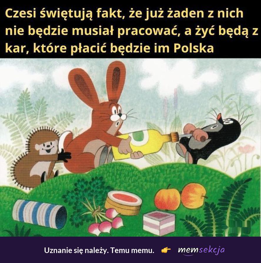 Czesi świętują