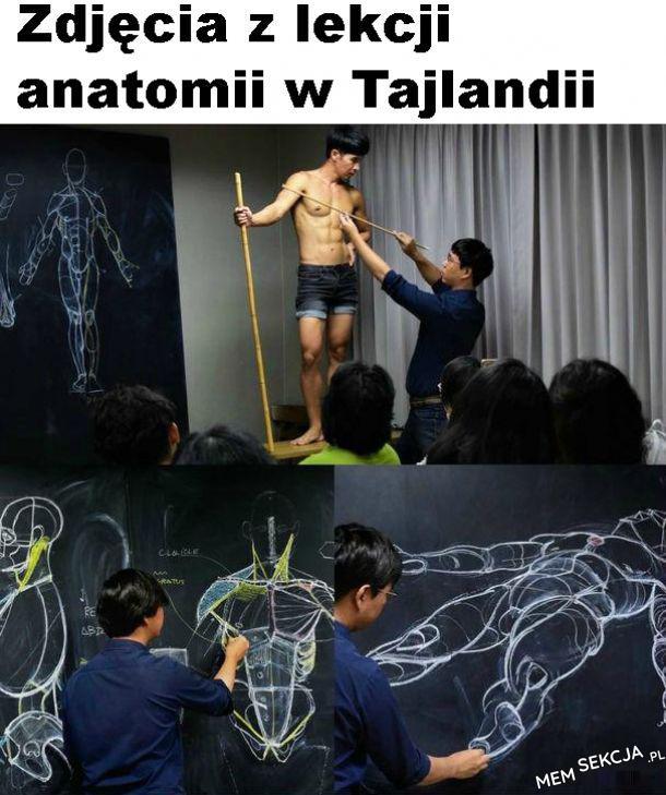 szczególnie Panie będą dobre z anatomii
